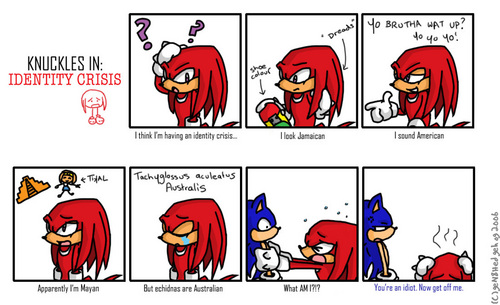 Knuckles in Identity Crisis