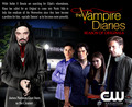 TVD Season 3 Mock Poster 2