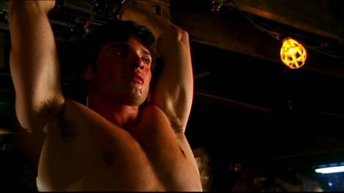 Tom Welling Hintergrund with a stück, hunk titled sexy tom