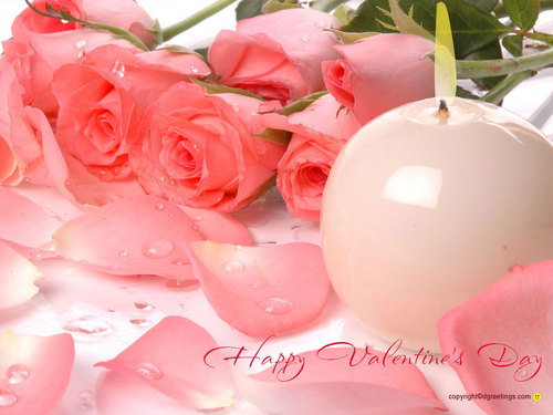 immagini bellissime wallpaper with a bouquet, a camellia, and a rose entitled Beautiful Pictures ^_^