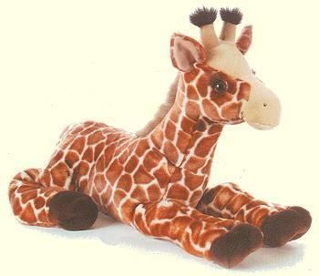 Cute Giraffe :)