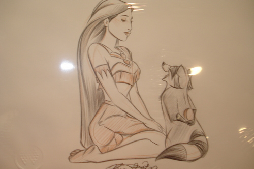 迪士尼 Princess drawings