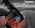 Gemma Teller Morrow - gemma-teller-morrow wallpaper