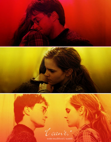 harry dan hermione wallpaper containing a konser called H&Hr