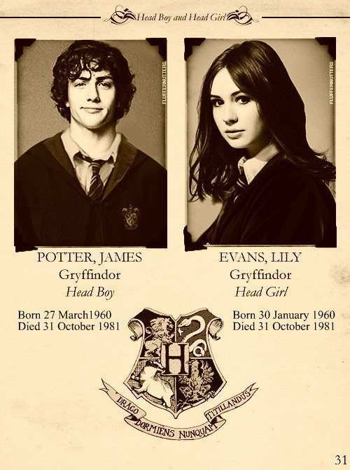 Harry Potter Vs. Twilight images James and Lily wallpaper ...