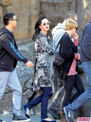 Katy Perry Gets Wild at the Sydney Zoo (PHOTOS)