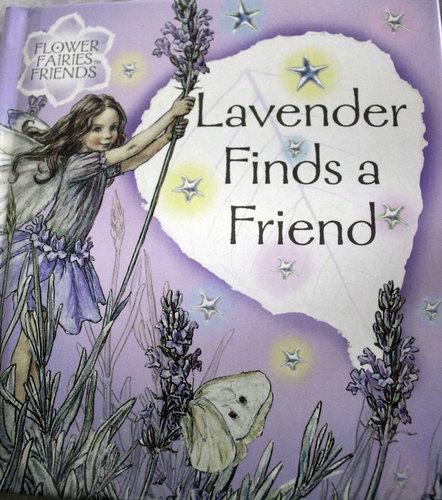 Lavender For You Dear Marta <3
