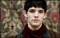 Merlin - colin-morgan photo