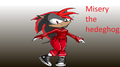 Misery The Hedgehog - girl-sonic-fan-characters fan art
