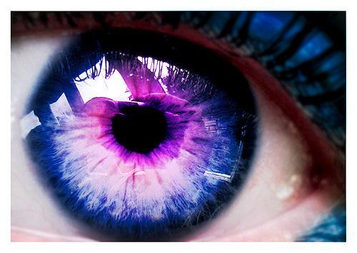 Purple দেওয়ালপত্র called Purple Eyes