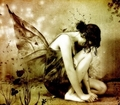 Sad Fairy - fairies photo