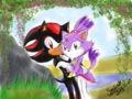 Shadaze! - sonic-couples fan art
