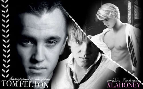 Tom Felton wallpaper with a portrait titled Tom ♥♥♥