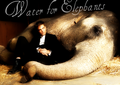 Water for Elephants - robert-pattinson fan art