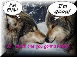 funny serigala