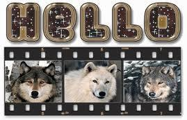 hello these are wolves