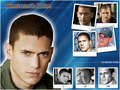 wenworth - wentworth-miller wallpaper