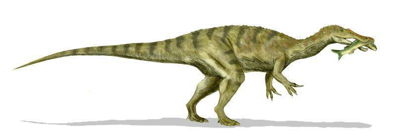 Baryonyx Dinosaurs Photo 22049947 Fanpop