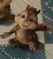 Cute Pics Of Simon Seville - alvin-and-the-chipmunks screencap