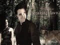 edward-cullen - Edward & Bella wallpaper