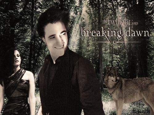 Edward Cullen wallpaper titled Edward & Bella