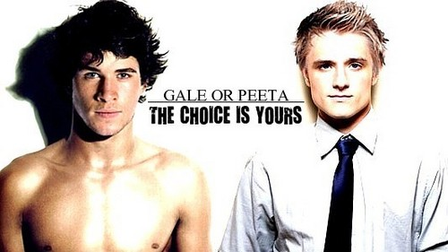 Hunger Games Guys wallpaper probably with a portrait and skin entitled Gale or Peeta