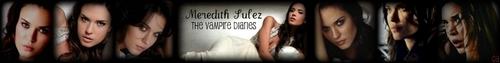 Meredith Sulez Banner