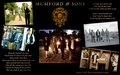 Mumford & Sons - mumford-and-sons photo