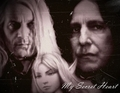 My Secret Heart for BlackHoud - severus-and-lucius-beneath-the-masks fan art