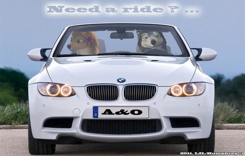 Need a ride? ...