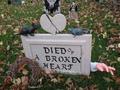 R.I.P broken heart