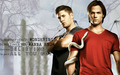 supernatural - SPN Wallpaper wallpaper