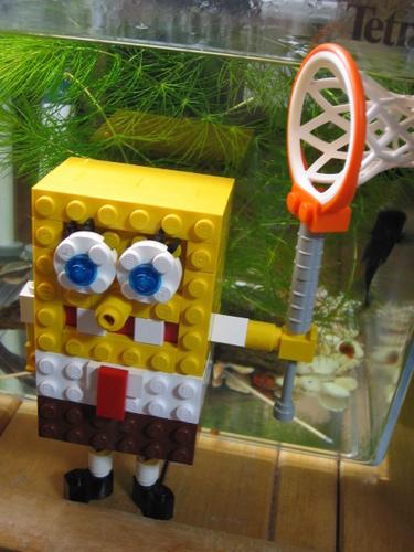 SpongeBob 사진