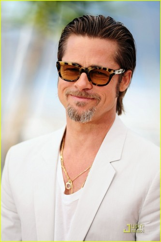 Brad Pitt: Cannes litrato Call for 'Tree of Life'