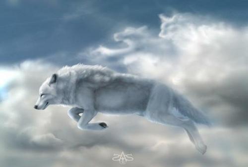 fantasía lobo