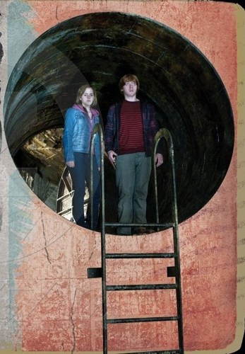 Hermione and Ron in the Chamber of Secrets-DH2
