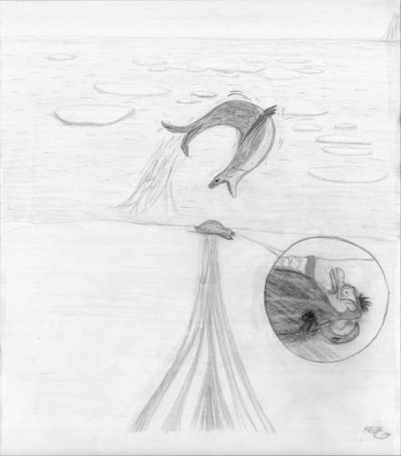 Rico - leopard foca, selo re-attacks