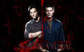 Supernatural - sam-winchester wallpaper