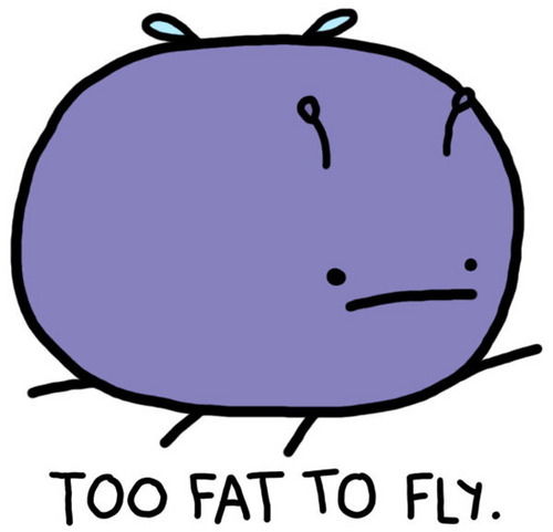 Too Fat to Fly :(