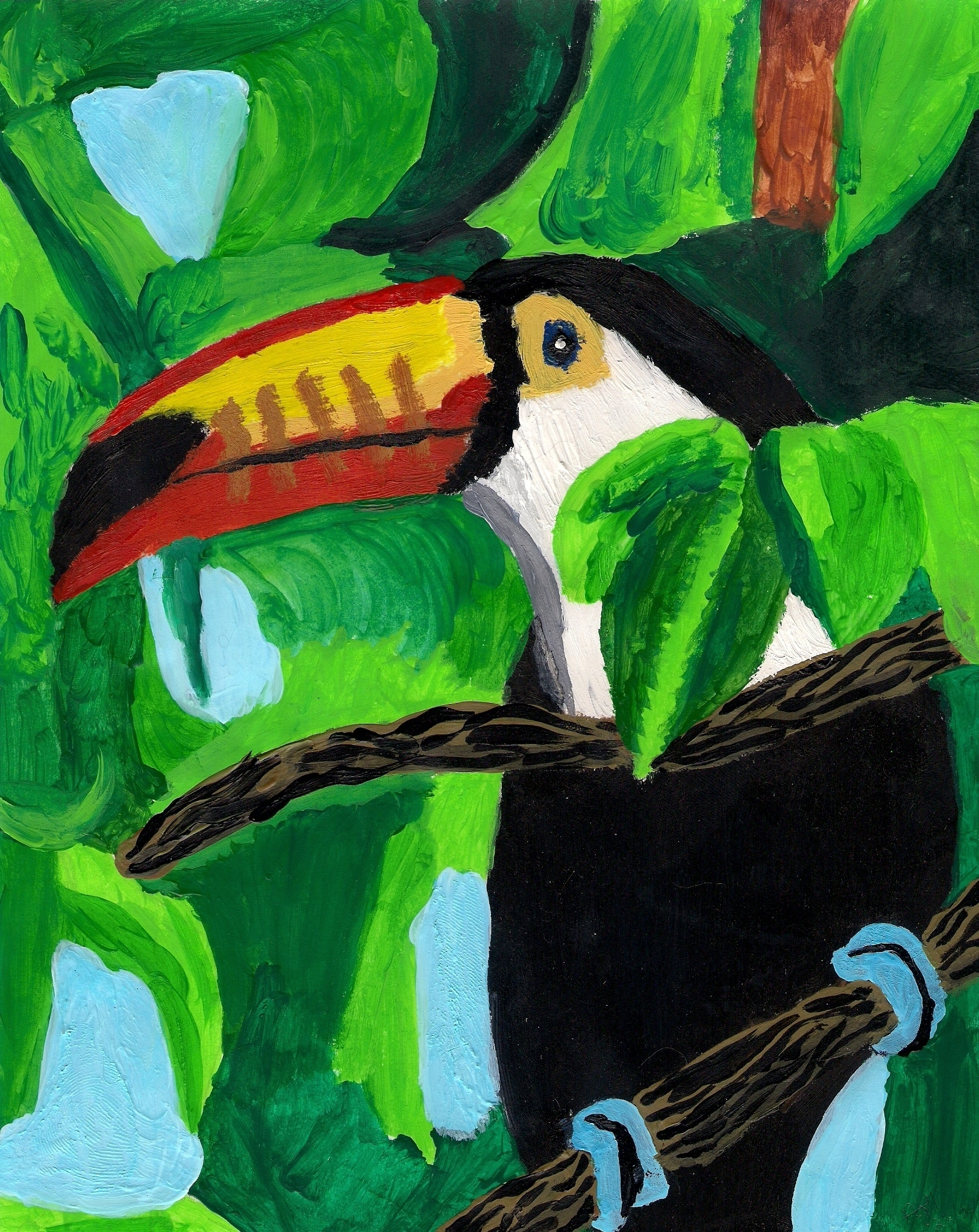 Toucan Drawing Step by Step Toucan Drawing Photo