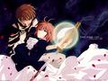 Tsubasa: Reservoir Chronicles Sakura and Syaoran