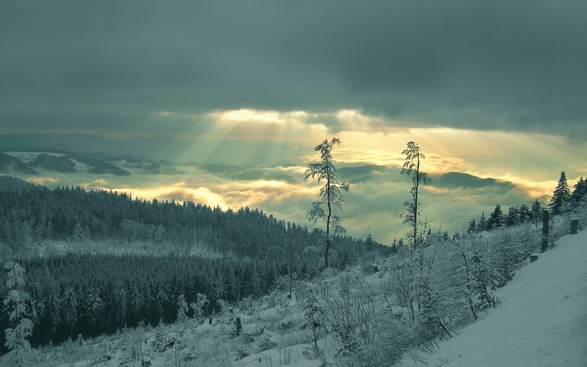 winter landscape winter wallpaper 22173777 fanpop