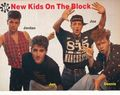 new kids on the block - new-kids-on-the-block photo