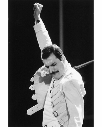 Beautiful Freddie ♥