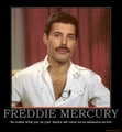 Beautiful Freddie ♥ - freddie-mercury photo