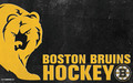 Bruins Logo - boston-bruins wallpaper
