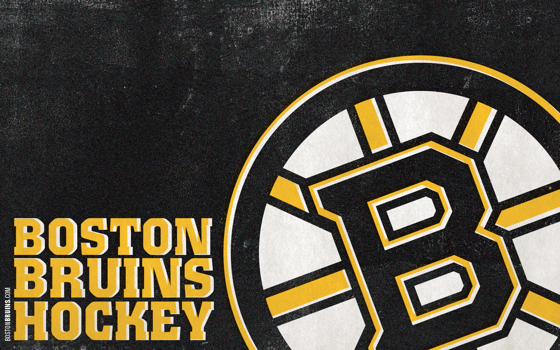 bruins - photo #11