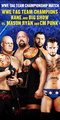 CM Punk and Mason Ryan vs Big Show and Kane - wwes-the-nexus photo