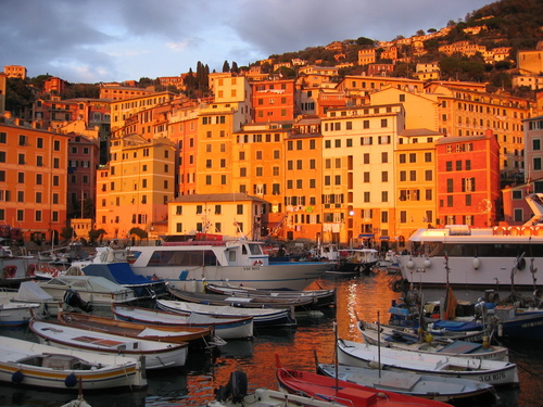 Italy wallpaper with a business district and a marina entitled Camogli