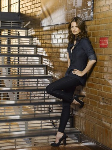 Castle wallpaper possibly containing a warehouse, a holding cell, and a penal institution called Castle Season 3 Cast Promotional Photos